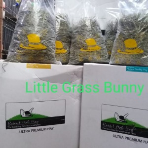 Harga Timothy Hay Second Cut By Rabbit Hole Hay Ultra Premium Hay Katalog.or.id