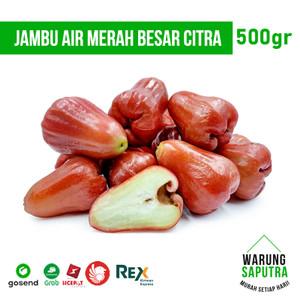 Harga buah jambu air merah besar citra manis segar | HARGALOKA.COM