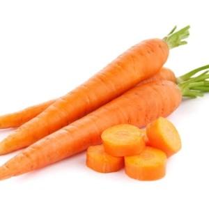 Harga benih wortel bibit sayuran benih tanaman | HARGALOKA.COM