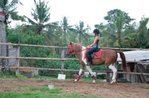 Harga tiket horse riding experience in bali   approx 1 2 hours | HARGALOKA.COM