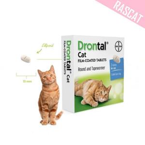 Katalog Drontal Cat Obat Cacing Kucing Harga Satu Tablet Katalog.or.id