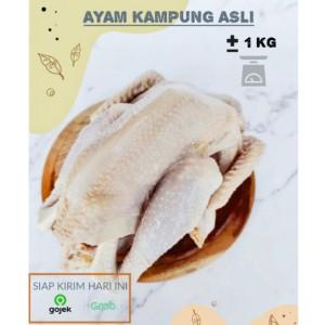 Harga ayam kampung utuh segar sehat bersih khusus bandung berat | HARGALOKA.COM