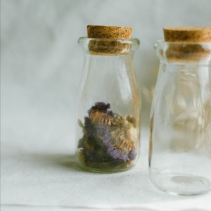 Info Promo Mini Glass Booth Display Dome Cover Flower Vase With Wood Cork Katalog.or.id
