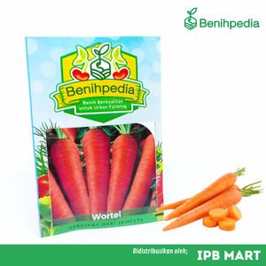 Harga benih wortel bibit tanaman | HARGALOKA.COM