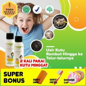 Info Shampo Kutu Freshy Katalog.or.id