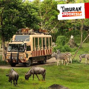 Harga tiket masuk bali safari and marine park   safari | HARGALOKA.COM