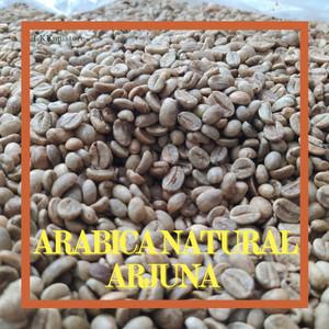 Harga greenbean kopi arabica arabika malang 1000gr | HARGALOKA.COM