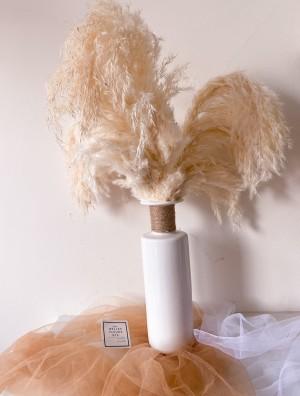 Harga pinterest short fluffy dreamy pampas bunga pampas dekorasi | HARGALOKA.COM