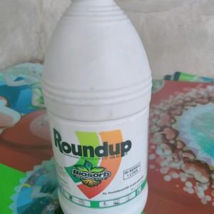 Harga obat roundup buat matiin rumput | HARGALOKA.COM
