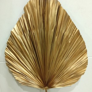 Harga dried daun palm besar gading serpong | HARGALOKA.COM