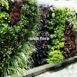 Harga jasa pembuatan taman pertikal garden harga | HARGALOKA.COM