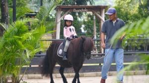 Harga tiket naik kuda di branchsto park tangerang   naik kuda | HARGALOKA.COM