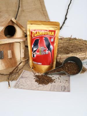 Harga pakan burung voer pur kroto gacor suplemen flamboyan ib   HARGALOKA.COM