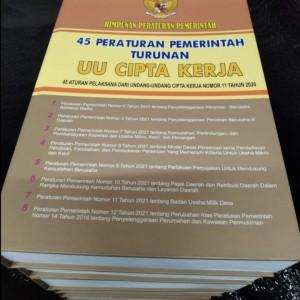 Harga 45 peraturan pemerintah turunan dari uu cipta   HARGALOKA.COM