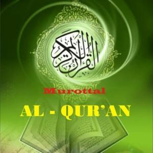 Harga usb sandisk 16gb isi murotal al 39 quran 30 juz 16 qori terbaik bonus | HARGALOKA.COM
