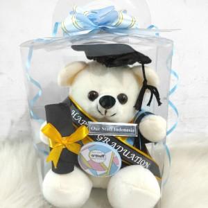 Harga boneka wisuda ostuff 25 cm   high quality sesuai gambar   a lengkap | HARGALOKA.COM