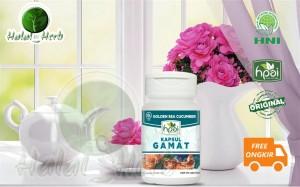 Harga kapsul gamat hpai hni gamat teripang emas herba nyeri | HARGALOKA.COM