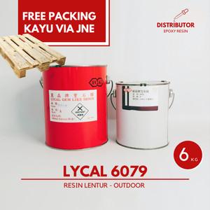 Harga Resin Bening Lentur Lycal 90 Gram Out Door Katalog.or.id