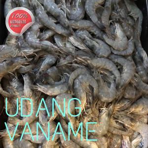 Info Udang Sawah Beku Size Kecil Katalog.or.id