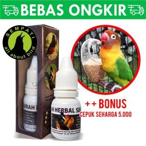 Katalog Gurah Pro Biojanna Obat Burung Sakit Radang Tenggorokan Serak Katalog.or.id