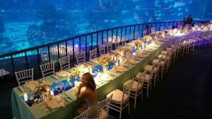 Harga combo tiket masuk s e a aquarium trick eye museum | HARGALOKA.COM