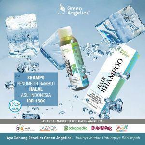 Harga Green Angelica Hair Regrowth Shampo Atau Sampo Penumbuh Rambut Katalog.or.id