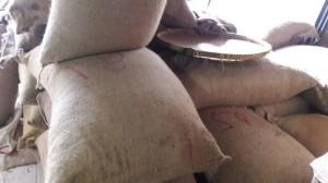 Harga kacang tanah india 1kg harga terjangkau gojek grab   HARGALOKA.COM
