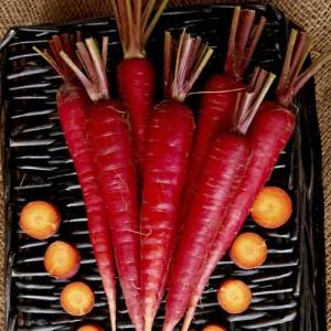 Harga bibit benih seeds sayur wortel merah langka atomic red | HARGALOKA.COM