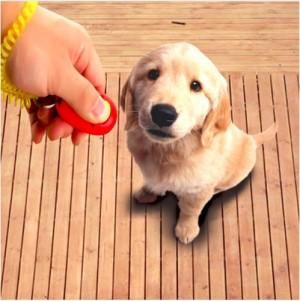 Harga dog clicker alat untuk melatih hewan peliharaan anjing atau   HARGALOKA.COM