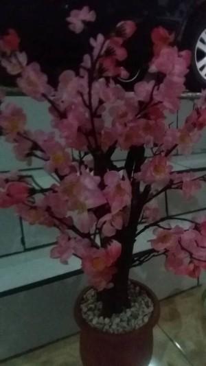 Info Bunga Plastik Sakura Katalog.or.id