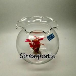Harga aquarium toples ikan shella 1 5l khusus | HARGALOKA.COM