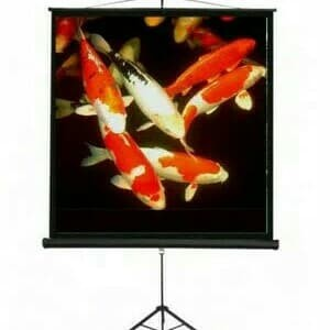 Harga screen projector brite 70 34 tripot layar proyektor brite 70 34 | HARGALOKA.COM