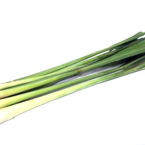 Info Pasir Wangi Maxi 30lt Aroma Apel Lavender Mocca Khusus Gojek Grab Katalog.or.id