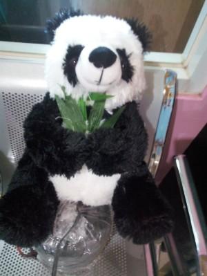 Harga boneka panda ukuran l | HARGALOKA.COM