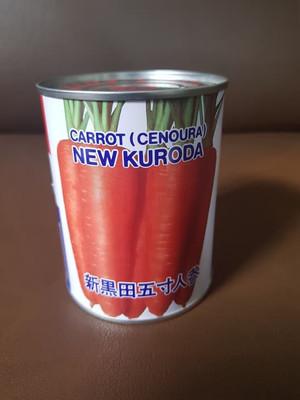 Harga bibit wortel new kuroda takii   100 grm kuantiti partai | HARGALOKA.COM