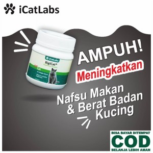 Harga Bigicat Vitamin Kucing Obat Kucing Cat Food Makanan Kucing A11 Katalog.or.id
