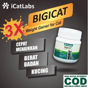 Katalog Bigicat Vitamin Kucing Obat Kucing Cat Food Makanan Kucing A11 Katalog.or.id