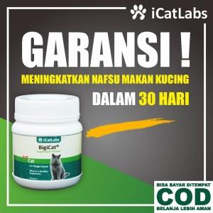 Info Bigicat Vitamin Kucing Obat Kucing Cat Food Makanan Kucing A11 Katalog.or.id