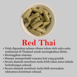 Harga herbal red thai   membuat anda lebih tahan lama tatkala   HARGALOKA.COM