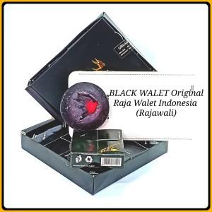 Harga Black Walet Katalog.or.id