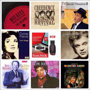 Harga 800 lagu barat kenangan vol 2 mp3 320kb s fdd sandisk   HARGALOKA.COM