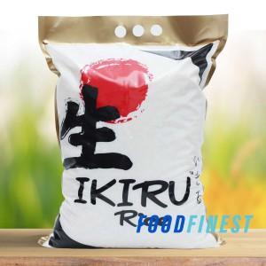 Info Ichiban Sushi Katalog.or.id