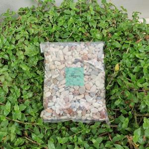 Harga Batu Erangga Stone Untuk Aquascape Katalog.or.id