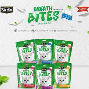 Harga Cemilan Favorit Kucing Kit Cat Breath Bites Tuna Flavour 60gram Katalog.or.id