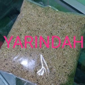 Harga canary seed biji kenari 1kg makanan burung | HARGALOKA.COM
