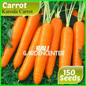 Harga benih bibit biji sayur wortel carrot | HARGALOKA.COM
