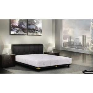 Harga multibed sporty   central spring bed   100 x | HARGALOKA.COM