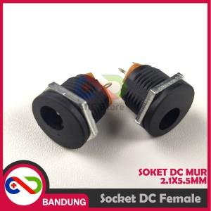 Info Jack Dc Baut Betina 2 1x5 5mm Female Power Adapter Screw Soket Socket Katalog.or.id