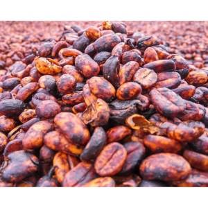 Harga mokhabika specialty coffee gayo kenawat black honey 200 | HARGALOKA.COM