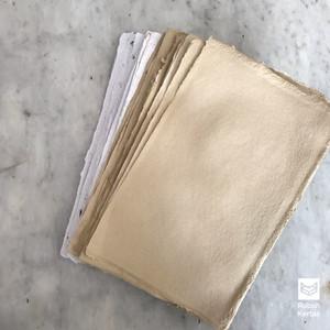Harga a6 kertas daur ulang   fennec corak pelepah   putih coklat   150 gsm   | HARGALOKA.COM
